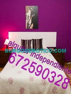 Alquiler para particulares, Particular Logroño 672590328